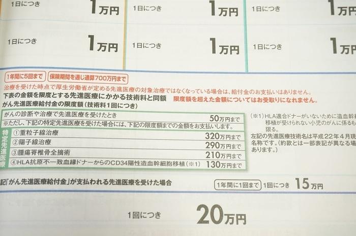 DSC01773.jpg